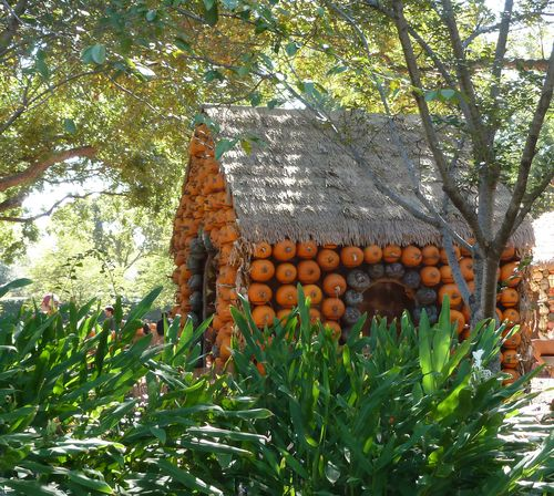 DallasArboretum-Pumpkins-03 copy
